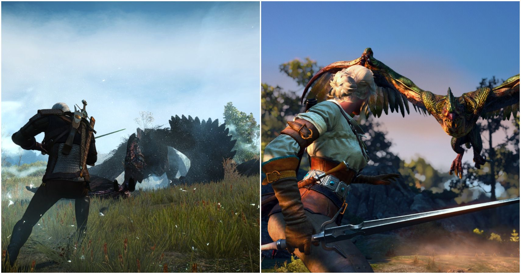The Witcher 3: Every Kind of Draconid In The Game | Game Rant