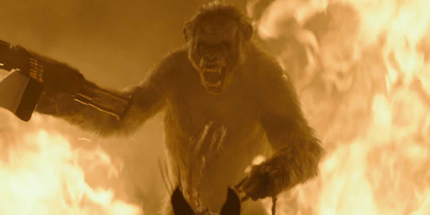 Koba Is Not The Villain Of Dawn Of The Planet Of The Apes